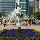Buckingham Fountain by Dave Nielsen