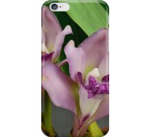 'picture perfect' Orchid 4 iPhone Case/Skin