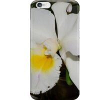 'picture perfect' Orchid 5 iPhone Case/Skin