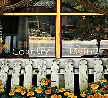 Country Living by pat gamwell