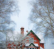 Dream Cottage by tmhphoto