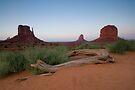 Monument Valley, Arizona. by Michael Treloar