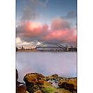Vertical Sydney Opera House by Kirk  Hille