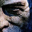 Stoney Stare. by Paul Rees-Jones
