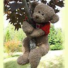 Maple Leaf Bear by L J Fraser