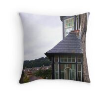 quaint windows Throw Pillow