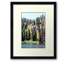 Trinity Lake Framed Print
