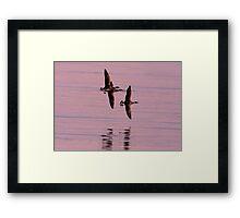 Fly-Past Framed Print