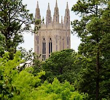 Top Of Duke Chapel by Cynthia48