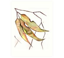 Gum Leaves Art Print
