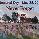 Memorial Day - May 25, 2015 by barnsis