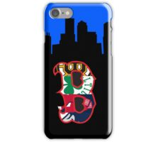 Boston Sports and Skyline iPhone Case/Skin