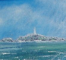 Looking out to Montague Island by Lesley George