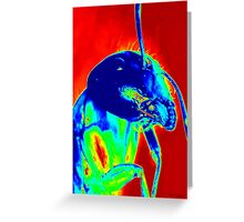 Big Kahuna of the Neon City Ant World Greeting Card