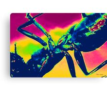 Dream World of the Ant Canvas Print