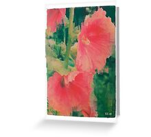 Bold Pink Hollyhocks Greeting Card