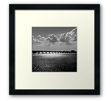 Bedazzled Framed Print