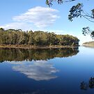Lake Tabourie by Catherine Davis