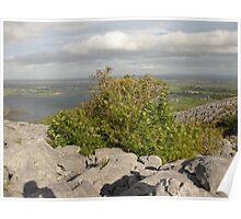Burren view Poster