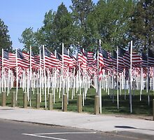 Memorial Day Flags by AuntieBarbie
