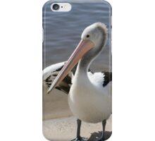 Pelican Pair iPhone Case/Skin