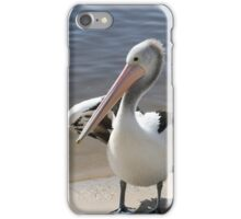Pelican Pair iPhone Case/Skin