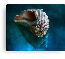 Aquatic Dreams IV Canvas Print