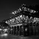 Temple  >>>>>>  view larger by Nicoletté Thain Photography