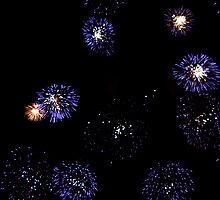 Fireworks Like Blue Flowers by Skye Hohmann