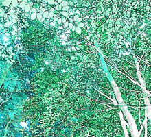 Summer woodland by Sandra O'Connor