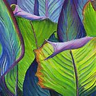 Canna leaves by Maureen Whittaker