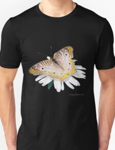 White Peacock Butterfly Tee T-Shirt