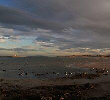 Skerries September Evening by Martina Fagan