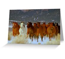 HORSE DRIVE ~CHERRY CREEK NEVADA  Greeting Card