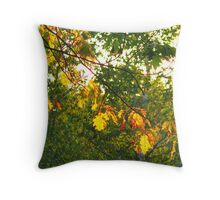 Backlit Throw Pillow