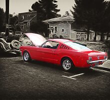 1965 Mustang Fastback by Brandon Taylor