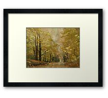 Road With a View Framed Print