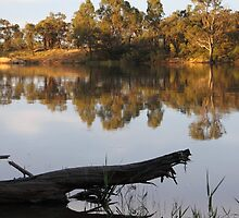 Reflections on the Murray River by Carole-Anne