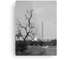 Washington,DC Metal Print