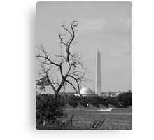 Washington,DC Canvas Print
