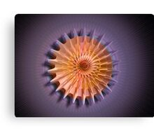 The Pinwheel Canvas Print
