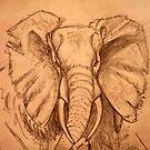 AFRICAN ELEPHANT - PENCIL SCHETCH by Magaret Meintjes