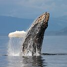 Exuberance by Gina Ruttle  (Whalegeek)