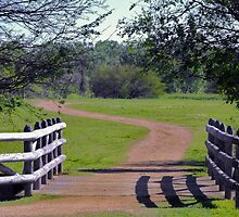 Scene from Washington-on-the-Brazos National Historical Park by Susan Russell