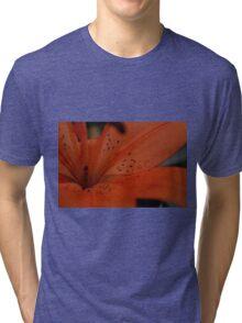 lillies 0.3 Tri-blend T-Shirt