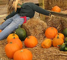 Scarecrow On The Farm by Linda Miller Gesualdo