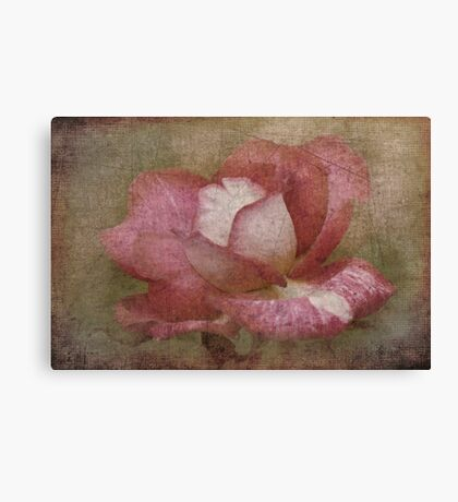 Nostalgic Rose Canvas Print