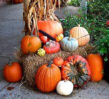 Fall Display by Charles Buchanan