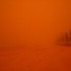 Sandstorm in Manly, Sydney  by Of Land & Ocean - Samantha Goode