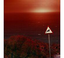 Wild Life by Nico  van der merwe